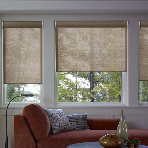 Blinds for patio screen enclosures sliding patio doors for Motorized shades home depot
