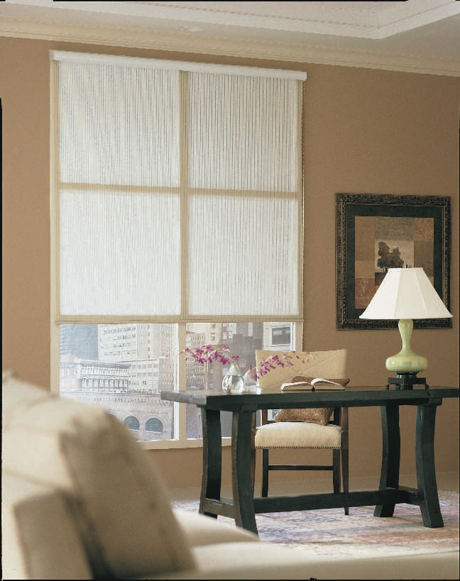 Opaque Roller Shades TheHomeDepot